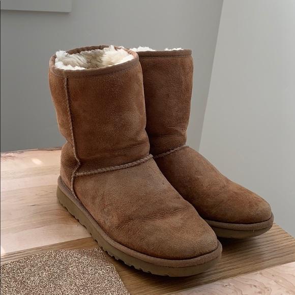 UGG Shoes - UGG Classic Short - Chestnut Size 7